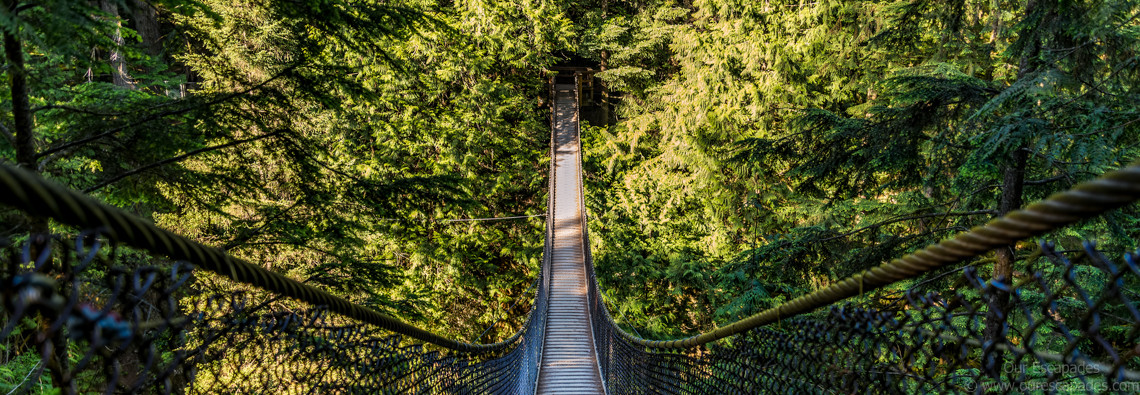 Our Escapades - Lynn Canyon - Featured Image