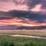 4 THINGS TO DO IN LAKE VILLAGE AREA, YELLOWSTONE